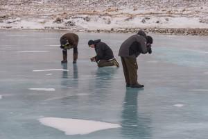 auf dem Eis